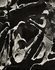1960s EDWARD WESTON Vintage Eroded Rock Stone Abstract Photo Gravure Art 11X14