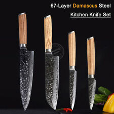 Kitchen Knife Set Damascus Japanese VG10 Steel 8'' Chef Santoku Knife Zebrawood