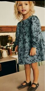 Zara Baby Girl Floral Print Flocked Dress 9-12 Months - BNWT - Sold Out