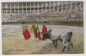 Sport Carte Postale Ensemble - Estocada - Taureau Combats - (A20)