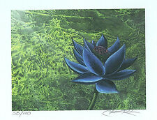 MTG Black Lotus Limited Edition Cristopher Rush Signed Print 38/100
