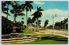 Looking East on Royal Poinciana Way in Palm Beach, Florida Chrome Postcard
