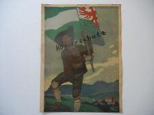 ORIGINAL Titelblatt Zeitschrift JUGEND 1909 Nr. 35 Tirol Max Bernuth (B373)