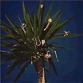 THE MOUNTAIN GOATS Zopilote Machine (2005)  CD ALBUM  NEW - STILL SEALED