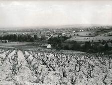 ROANNE c.1960 - La Plaine, Les Coteaux de Pouilly Loire - Div 5629