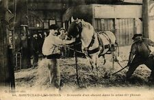 Montceau les mines-descent of a horse in the mine (1re) phase