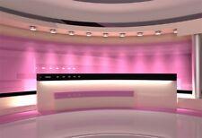 Studio Pink Light Backgrounds Indoor Scene Photography Props Vinyl Backdrops