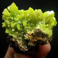 Green Pyromorphite Crystal Specimen-pygx2ie0328