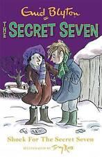Shock for the Secret Seven