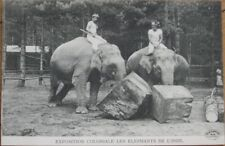 1909 Postcard: Indian Exposition Coloniale - Elephants of India