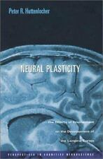 Neural Plasticity: The Effects of Environment on the Development of the Cerebral