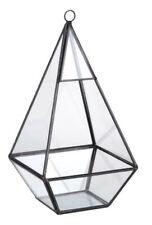 Black Triangle Terrarium