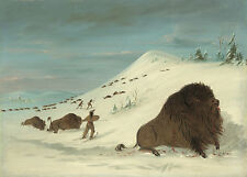 George Catlin's Indian Gallery: Buffalo Lancing in Snow Drifts - Fine Art Print