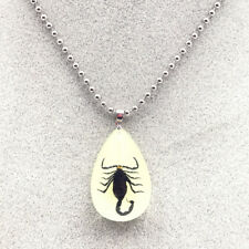 Black Brown Imitation Amber Real Scorpion Pendant Necklace With steel chain