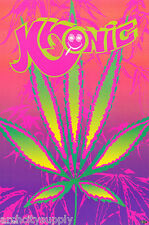 LOT OF 2 POSTERS :PYSCHEDELIC : MARIJUANA :BLACKLIGHT:  KRONIC    #3351   LC23 E