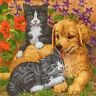 4 Motivservietten Servietten Napkins Tovaglioli Tiermotiv Hund Katze (986)