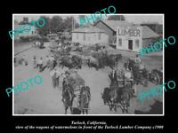 OLD LARGE HISTORIC PHOTO OF TURLOCK CALIFORNIA, THE LUMBER Co & WATERMELONS 1900