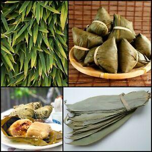 25 pcs Dried Bamboo Leaves pure natural Zongzi Sticky Rice Dumpling 100% Organic