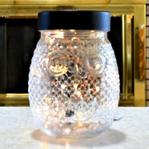 Clear Glass Owl Accent Table Lamp
