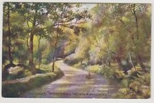 "Stirlingshire postcard - Trossachs ""Where Twines the Path in Shadow Hid"""