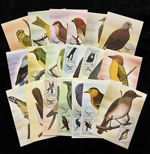 S.Tome Thomas 1983 Birds Wildlife Used Maxi Cards x 20(D 25