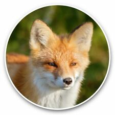 2 x Vinyl Stickers 30cm - Young Ginger Fox  #46525