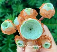"Greenovia SP Mountain Rose Cluster Korean Rare Succulent Plant 1.5-2"""