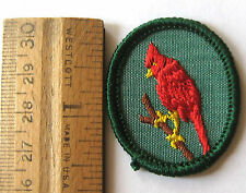 Vintage Oval 1960-1970 Girl Scout CARDINAL TROOP CREST Red Bird Patch Badge NEW