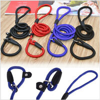 UK Pet Dog Nylon Rope Training Leash Slip Lead Straps Adjustable Traction Collar