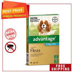 ADVANTAGE Flea Treatment for Dogs 4 to 10 Kg AQUA Pack 6 Pipettes AU Shop