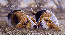 More details for basset hound fine art dog print by paul doyle. here's looking at you