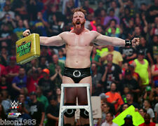 Brand New WWE Sheamus Money in the Bank Breifcase top of ladder 8x10 photo
