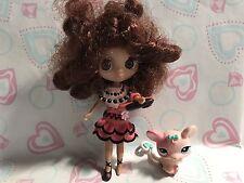 Littlest Pet Shop Blythe Doll B14 W/ Pet Mouse Sooo Cute!!!