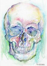 HUMAN SKULL #02 - Original Watercolor Painting - Skeleton bones fine art drawing
