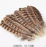 5pcs Natural Female Pheasant Feathers 12-15cm DIY Craft Wedding Millinery Decor