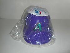 Vintage Sports Product Corp Arizona Diamondbacks Souvenir Battling Helmet