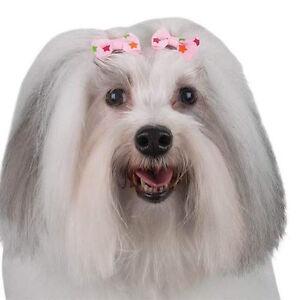 Dog Grooming Bow w. Spring Clip - Aria - Peyton Star - Set of 4 bows