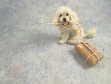 OOAK~Realistic~POODLE DOG~ hand sculpted~Mini~handmade dollhouse pet~collectible