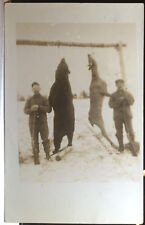 HUNTERS, Dead Deer, DEAD BEAR, Photo Post Card 1910-18 GUNS, Macabre