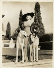 Mae West & her Borzoi puppy dogs movie star 8x10 photo