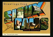 Modern Large Letter Postcard Greetings from Sioux Falls South Dakota SD Pheasant