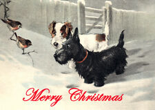 SCOTTISH TERRIER SEALYHAM SCOTTIE DOG SINGLE DOG PRINT GREETING CHRISTMAS CARD