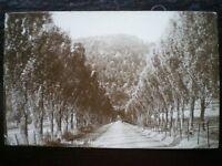 POSTCARD RP PERTHSHIRE ABERFELDY WEEM ROAD 1910'S