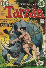 DC Comics Tarzan Of The Apes (1972 Series) # 212 FN/VF 7.0