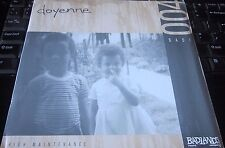 "DOYENNE ‎– High Maintenance 7"" with orig inserts BADLANDS RECORDS INDIE EX VINYL"