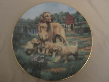GOLDEN RETRIEVERS collector plate ROBERT Bob CHRISTIE Sporting Dogs HUNTING