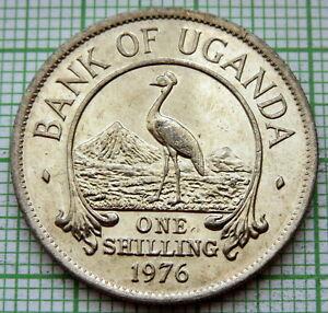 UGANDA 1976 ONE SHILLING, GREY CROWNED CRANE, UNC ONE YEAR TYPE