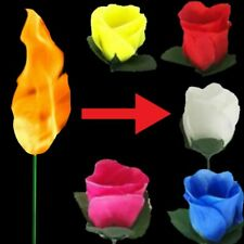 Flame to Rose Torch to Rose Fire to Rose Flame to Flower Fire Torch to Flower