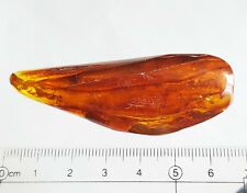 3 Fossil Insects Inclusions - Natural Baltic Amber Stone 11.5 g