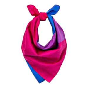 Bisexual Bandana 22x22 inch Double Sided